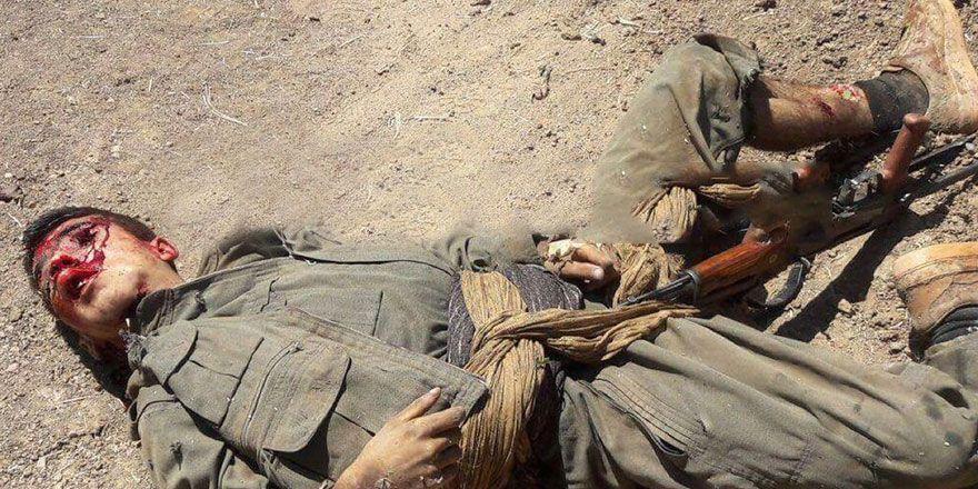 Silvan ve Kızıltepe'de öldürülen PKK'liler