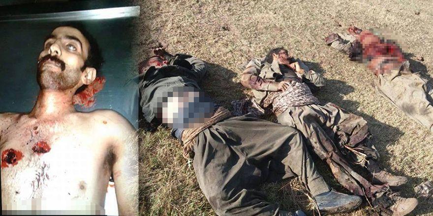 Ağrı'da ve Ordu'da öldürülen PKK'lilerin görüntüleri
