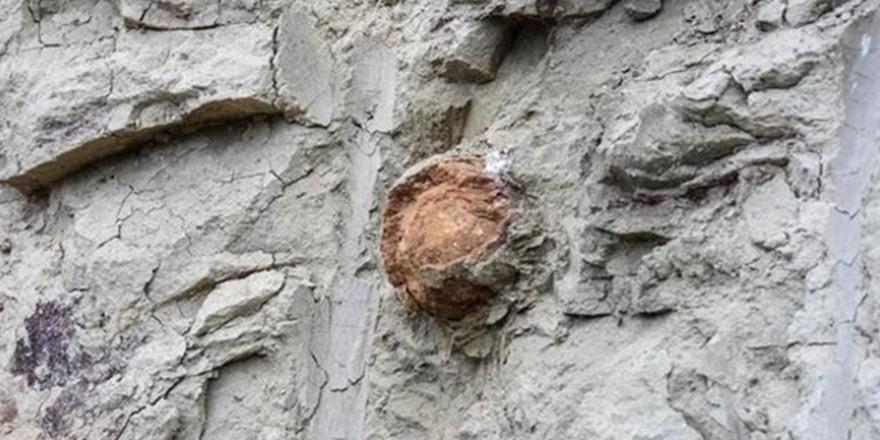 Kütahya'da bulunan Roma dönemine ait taş güllelerin görüntüleri