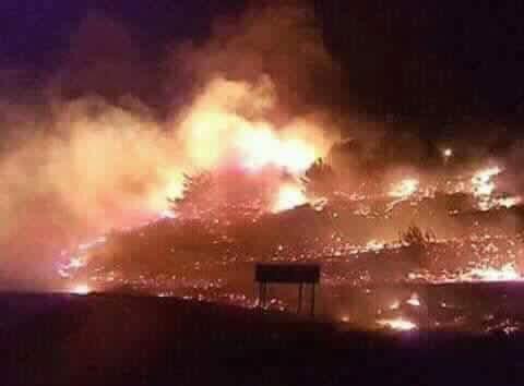İsrail'de yangın görüntüleri: Yahudiler tedirgin 1