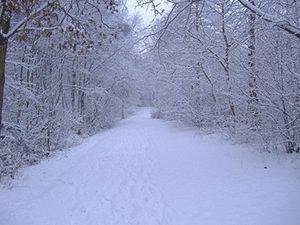 Ankara ve Bolu'da yılın ilk kar görüntüleri