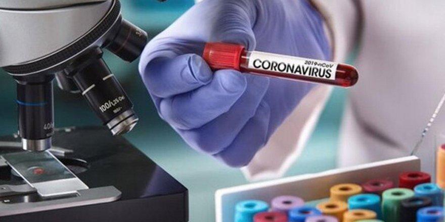 Bilim Kurulu üyesi Türkiye'de aşı denemelerinin başlayacağı tarihi açıkladı