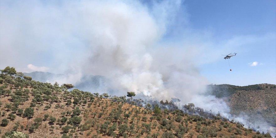 Muğla'da çıkan orman yangını korkuttu