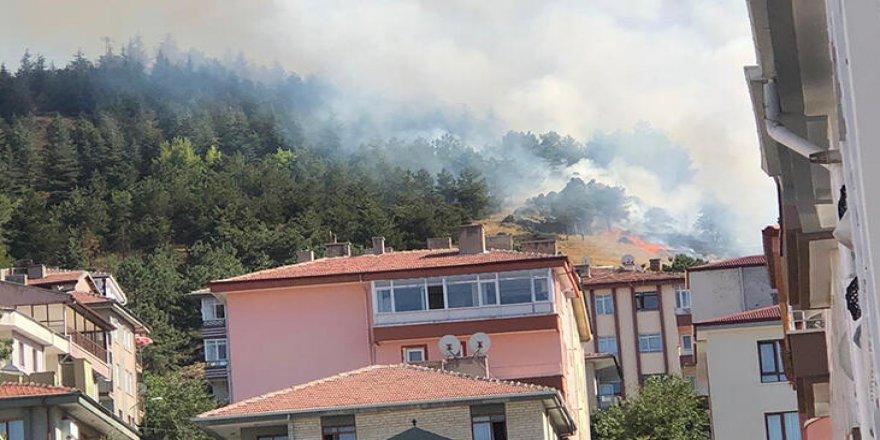 Ankara'da korkutanorman yangını