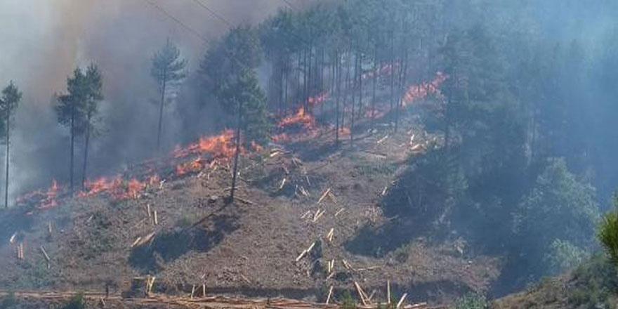 Adana'da yeni bir yangın daha başladı, bir mahalle boşaltıldı