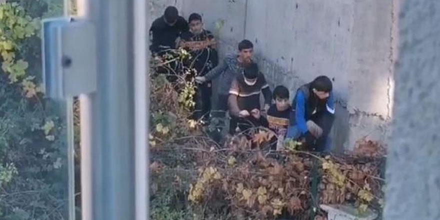 Bursa'da kısıtlamayı ihlal eden çocukların mücadelesi güldürdü