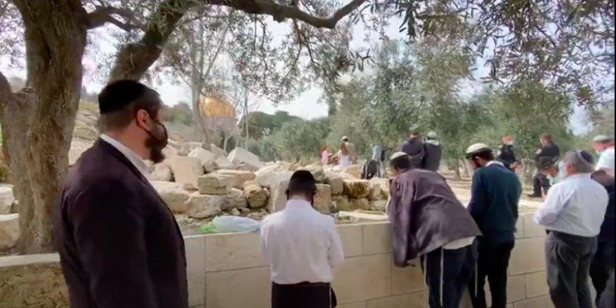 Yahudi işgalci yerleşimciler, Mescid-i Aksa'nın hürmetini çiğnedi!