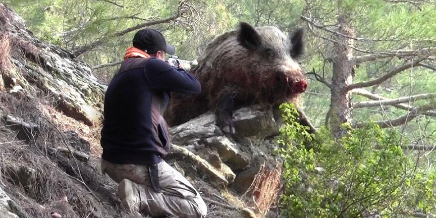 9 ayda 9 kişi domuz zannedilerek vuruldu!