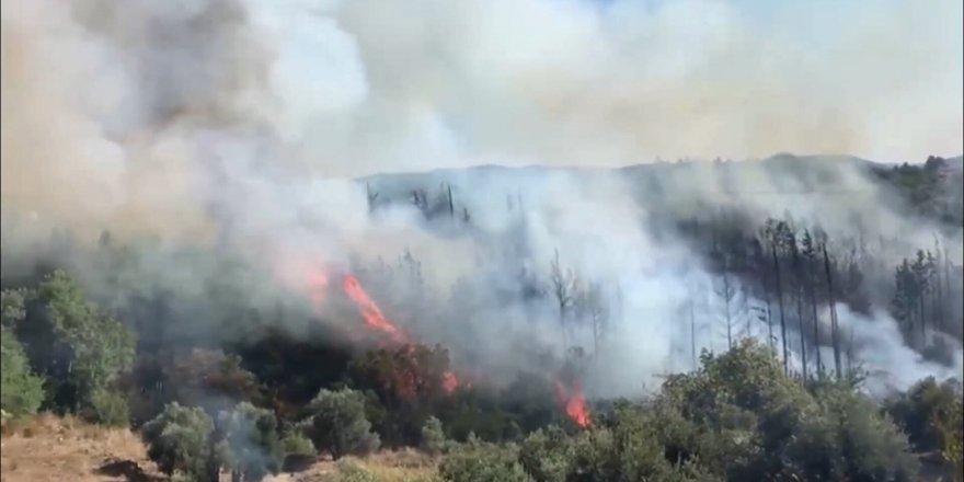 Antalya'da korkutan yangın: Ormanlık alana sıçradı!