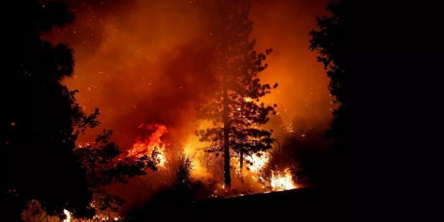 California'da kontrol altına alınamayan orman yangınları etkisini sürdürüyor