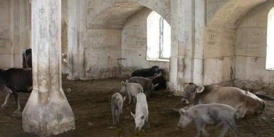Camiyi ateşe verip içinde domuz beslemişler
