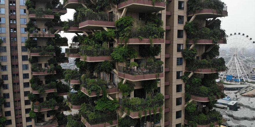 Çin'de orman apartmanlar felakete dönüştü!