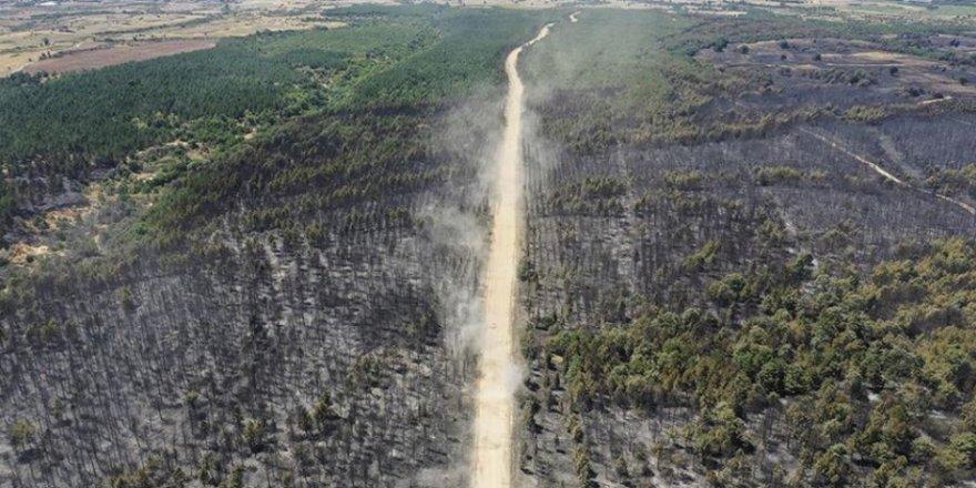 Edirne'deki orman yangını bölgesinde soğutma çalışmaları devam ediyor