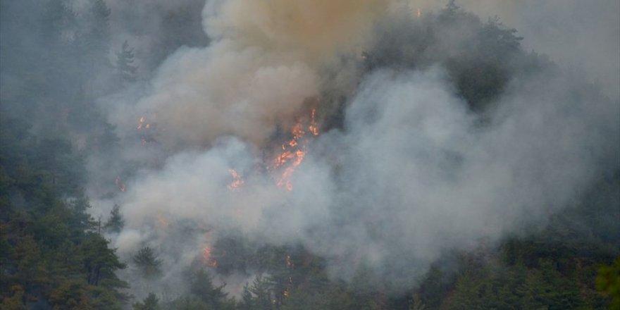 Eskişehir'de arabada çıkan yangın ormana sıçradı