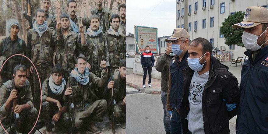 HDP'li ilçe başkanının kıdemli bir gerilla olduğu ortaya çıktı!