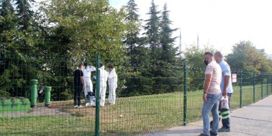İstanbul'da ağaca asılı erkek cesedi bulundu