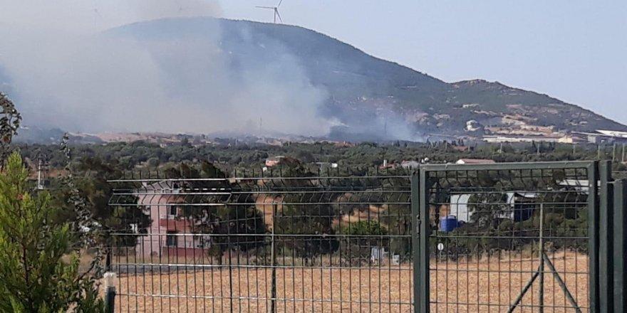 İzmir'de yangın ormanlık alana sıçradı