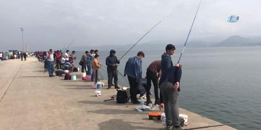 Kafesin ağları yırtılınca 2 ton balık çevreye dağıldı