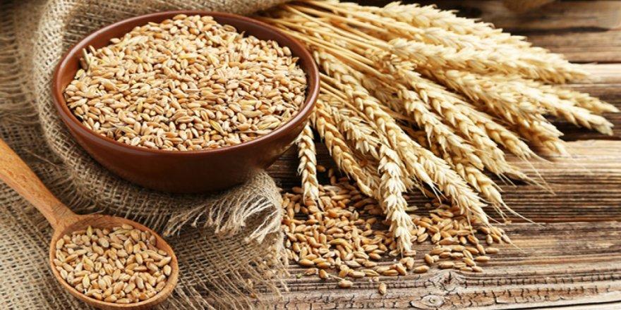 Kazakistan'dan, Afganistan'a buğday ve un ihracatı