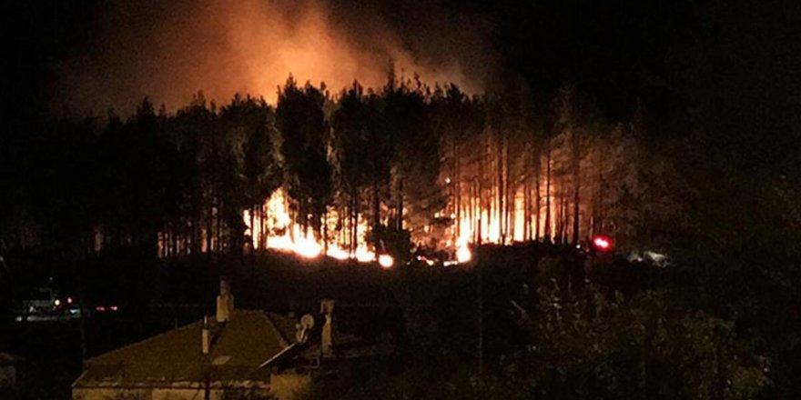 Muğla'nın Menteşe ilçesinde orman yangını