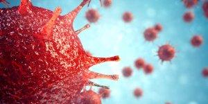 Koronavirüs ile ilgili henüz cevabı bulunamamış 9 soru