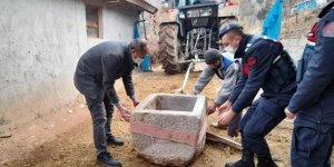 Tarlada bulduğu 1200 yıllık vaftiz teknesini satmaya çalışınca yakalandı