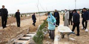 İran'daki ölümler için 4 katlı mezarlık inşa edildi